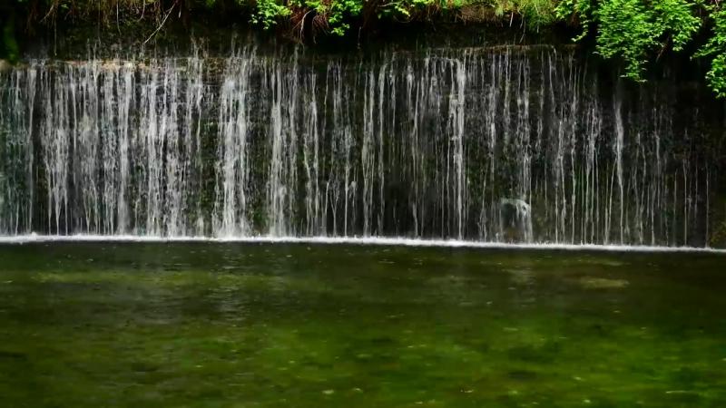 新緑が美しい軽井沢の白糸の滝・4K撮影