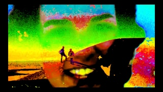 Meat Beat Manifesto - Prime Audio Soup (Vegetarian Soup By Boards Of Canada) [BIAS352]
