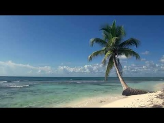 Relaxing 3 Hour Video of A Tropical Beach with Blue Sky sleepy
