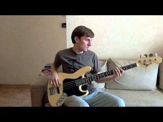 Roman Aleksejevnin - All Day Long (Funk'n'Stein bass cover)