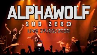 Alpha Wolf  - Sub Zero (Live 29/02/2020)