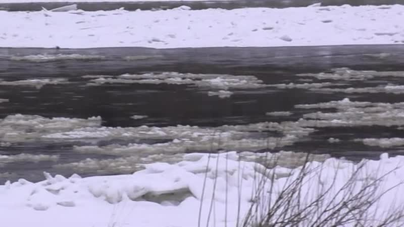 состояния рек в Благовещенской стороне 25 ноября 2020 г