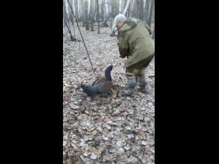 Нападение местного авторитета на охотника