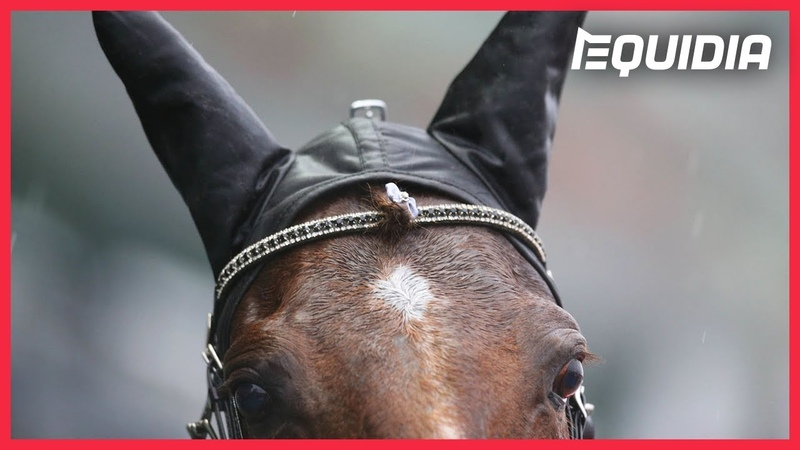GU D'HÉRIPRÉ JOUERA SA CARTE A FOND Reportage Prix d'Amérique Legend Race 2021