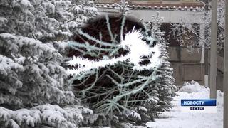 """Удивительные погодные условия - """"ледяные иглы"""" в Бежецке. Ожидаются сильные морозы"""