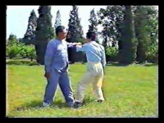 Chen Tai Chi. Pushing Hands. Feng Zhiqiang