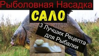 Супер Рыболовная Насадка -САЛО- 3 ЛУЧШИХ РЕЦЕПТА ДЛЯ РЫБАЛКИ. bait for  for bream.