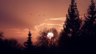 Заход солнца в 19:30.