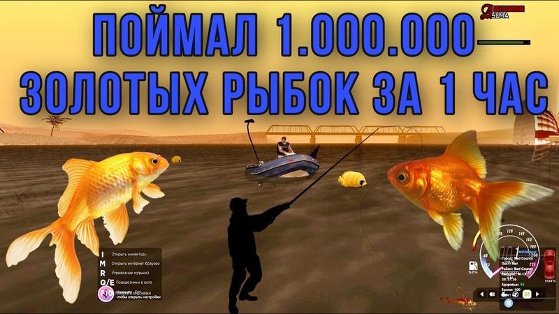 ЖЁСТКИЙ ФАРМ ЗОЛОТЫХ РЫБОК🔥ЗАРАБОТОК 2 500 000 В ЧАС💰АРИЗОНА НОВЫЕ КВЕСТЫ ARIZONA RP YUMA GTA SAMP