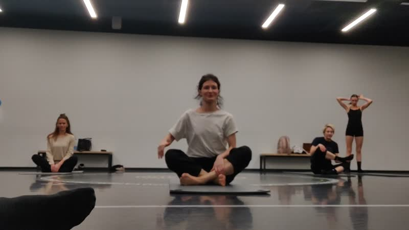 Йога для танцовщиков. Практика для развития тела танцовщиков и смежных направлений, связанных с движением