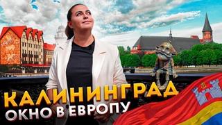Калининград 2021 — Что посмотреть и куда сходить   Цены в Калининграде, Пляж Янтарный, Остров Канта
