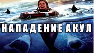 Нападение акул в весенние каникулы (2005 год) #акулы #акула