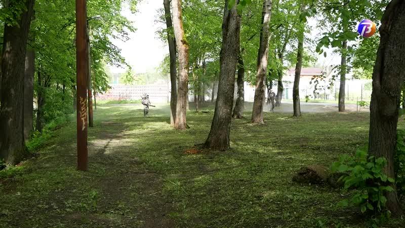 Выкса-МЕДИА: борьба с клещами и грызунами