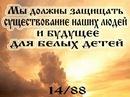 Фотоальбом Дмитрия Сученко