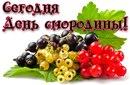 Персональный фотоальбом Виты Кервась