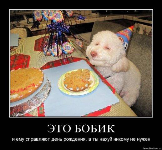 Вася Гайфуллин фото №26