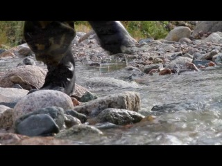 LOVE STORY with AIDAHAR - premium PHOTO - VIDEO STUDIO