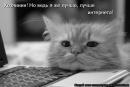 Фотоальбом Владимира Ребрикова