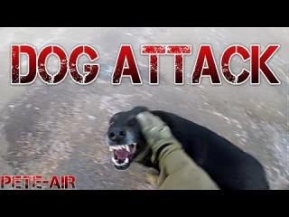 Airsoft CZ - Dog Attack [CZ + ENG SUBTITLES]