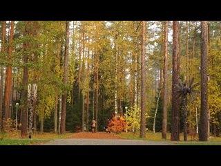 Отдых в Ленинградской области | Золотая осень | Отель Raivola | Райвола