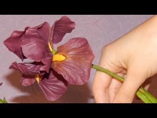 Ирис из холодного фарфора \ Iris of cold porcelain