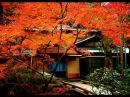 ОСЕННИЙ КИОТО музыка Японский саксофон играет Сатори Ода, автор клипа Зоя Боур-Москаленко