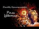 Джидду Кришнамурти — Роль Цветка тв. передача «Человеческий фактор»