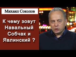 Михаил Соколов - К чему зовут Навальный Собчак и Явлинский ... Радио Свобода