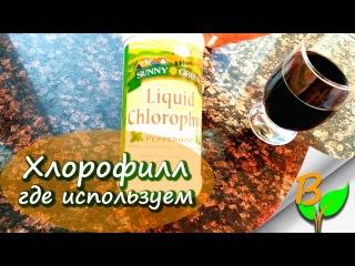 Жидкий хлорофилл и его использование
