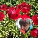 Фотоальбом человека Нины Сложеникиной