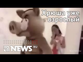 Аниматор в костюме кабана станцевал стриптиз в детском саду Сургута