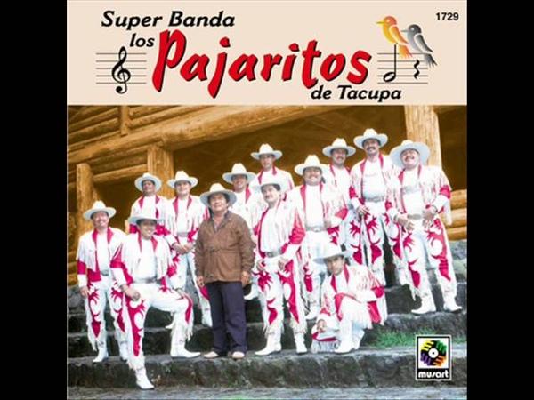 El Tortón Negro - Banda Los Pajaritos de Tacupa 1997