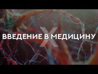 SoLo - ВВЕДЕНИЕ В МЕДИЦИНУ Х
