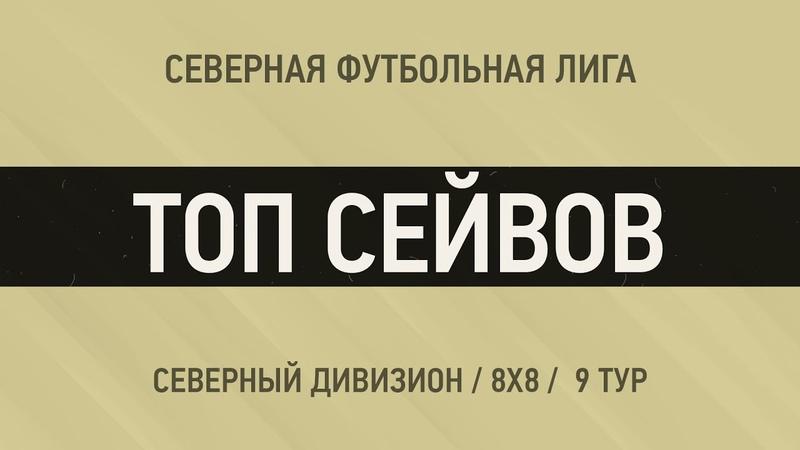 ТОП СЕЙВОВ Северный Дивизион 9 тур