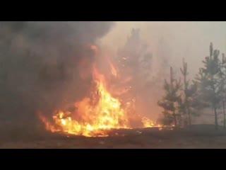 Пожежа на Луганщині ч2