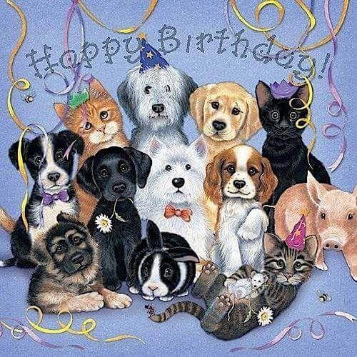 Открытки с животными с днем рождения девушке