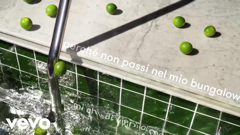 Crucchi Gang Francesco Wilking Il mio bungalow Lyric Video