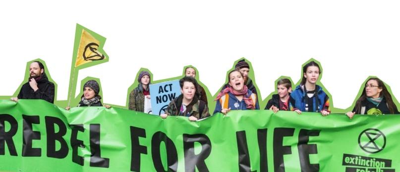 До чего доводит активизм, изображение №2