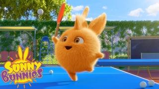 Cartoons for Children   SUNNY BUNNIES - PING PONG   Funny Cartoons For Children