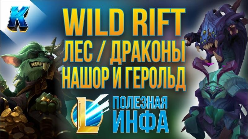 Коротко о важном в Wild Rift Драконы Барон Нашор и Герольд Бездны Лес Поддержка