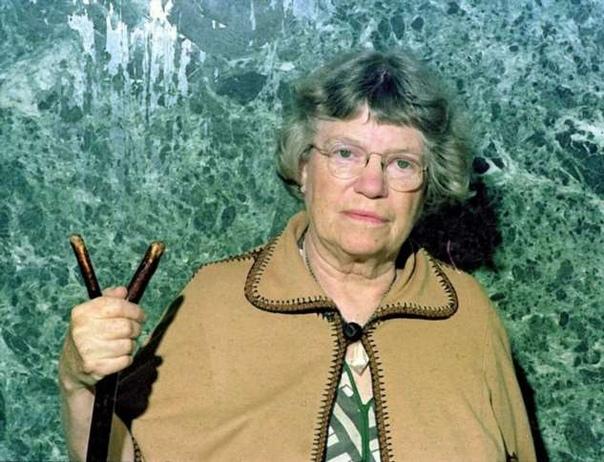 Много лет назад антрополог Маргарет Мид спросила студентов о том, что они считаю...