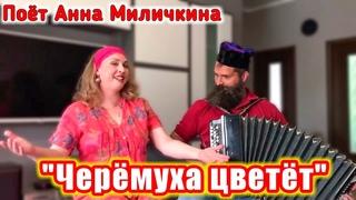 """""""Черёмуха цветёт"""", (песня о любви под баян). Поёт Анна Миличкина."""