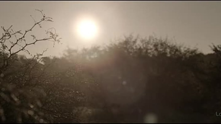 Восстание Техаса 1 сезон 4 серия