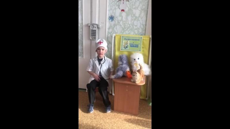Сметанин Николай В кошачьей неотложке