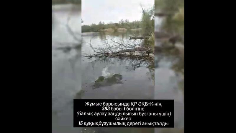 Видео от Зайсан Ауданы Әкімдігі