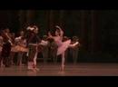 Спящая красавица-2 акт - Royal Opera House16.01.2020_J Silver