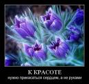 Фотоальбом Юрия Руцкого