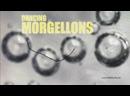 SCHOCK Zappelnde Würmchen sind Dancing Morgellons Eine EHRLICHE Untersuchung dieser Nano CTs von DWD Ich bin der Mungo