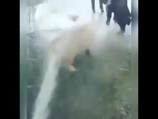 Когда наконец-то дали теплую воду