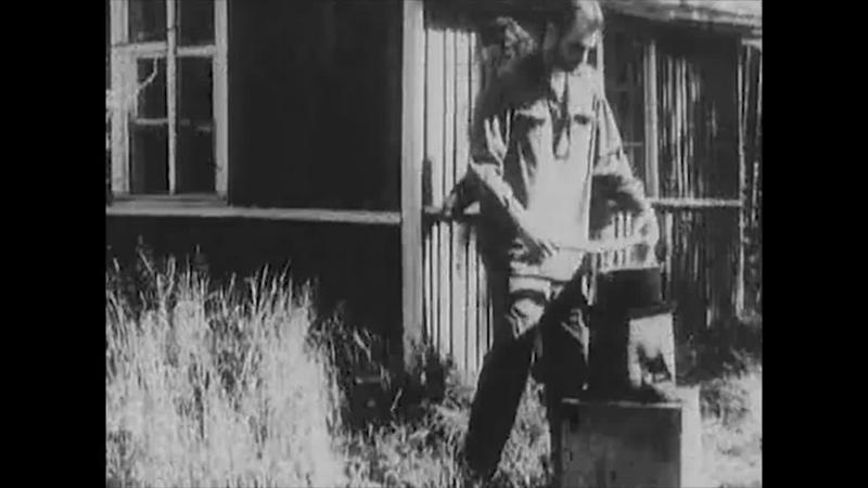 Вепри Суицида (1988) реж. Евгений Юфит